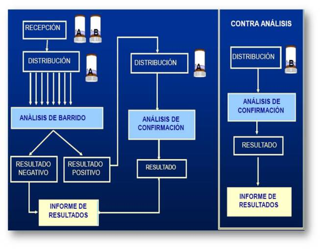 Imagen proceso analisis