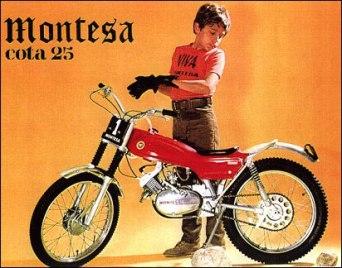 Montsea cota25
