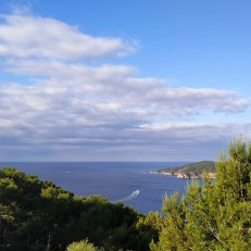 Vistas Far San Sebastià